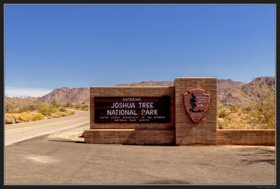 May 2016 Western Trip - Joshua Tree NP. - 01
