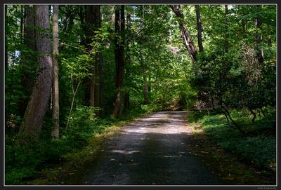 Stan Hywet Gardens - Akron OH - Aug 2017 - 18