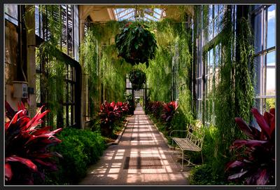 Longwood Gardens - PA - Aug 2017 - 46