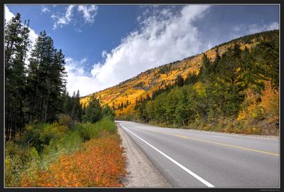 Colorado Fall Color Trip - Sep 2016 - Ashcroft Area 54